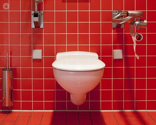 A red tiled bathroom with a tiolet bowl.